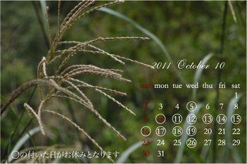 2011 10月-[更新済み]