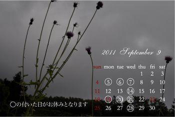 2011 8月-[更新済み]