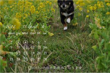 2012-4月-[更新済み]